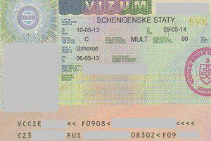 visa sample
